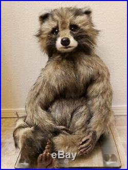 OLGA BOGACHEVA RACOON BULLY! 27 Big! Rare! Artist Bear Very Collectible