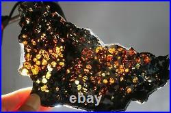 Rare & beautiful big slice of Kenyan Pallasite olivine meteorite with iron 99gr
